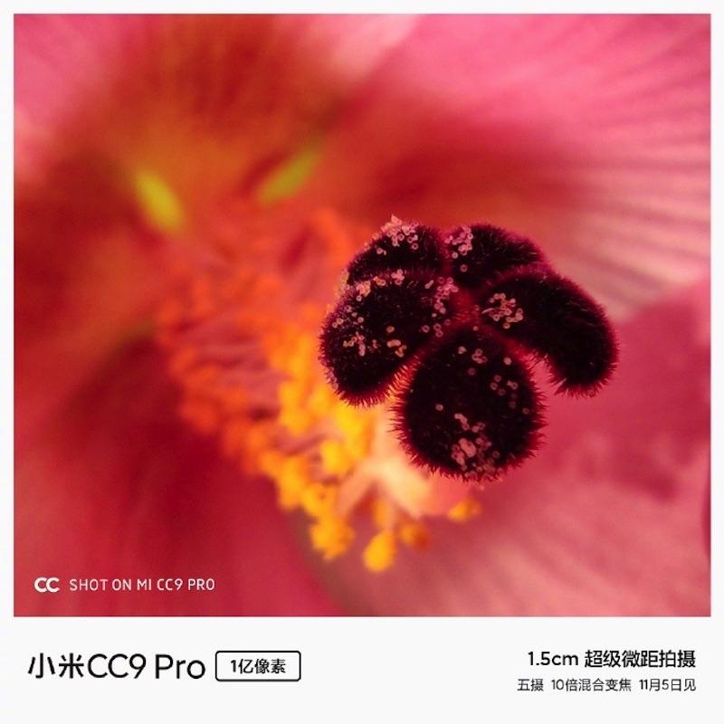 تصاویر ماکرو و قدرت بزرگنمایی Xiaomi Mi CC9 Pro؛ زیبا و شگفت انگیز