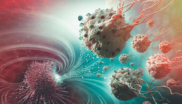 کشف یک ساختار در باکتری و امیدواری برای ساخت آنتی بیوتیکهای جدید